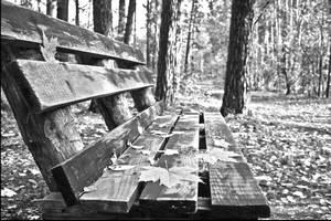 Пустая скамейка