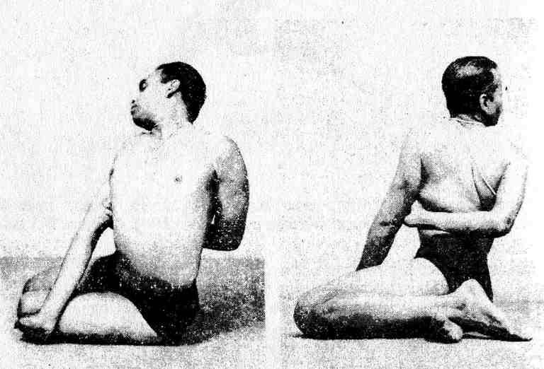 Название асан в йоге: как формируются названия поз и что означают