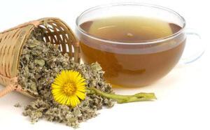 Лечение девясилом - рецепты домашних настоек