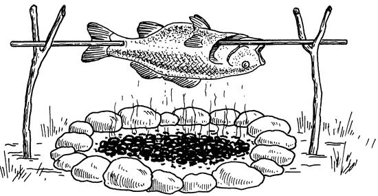 Рыба в походе