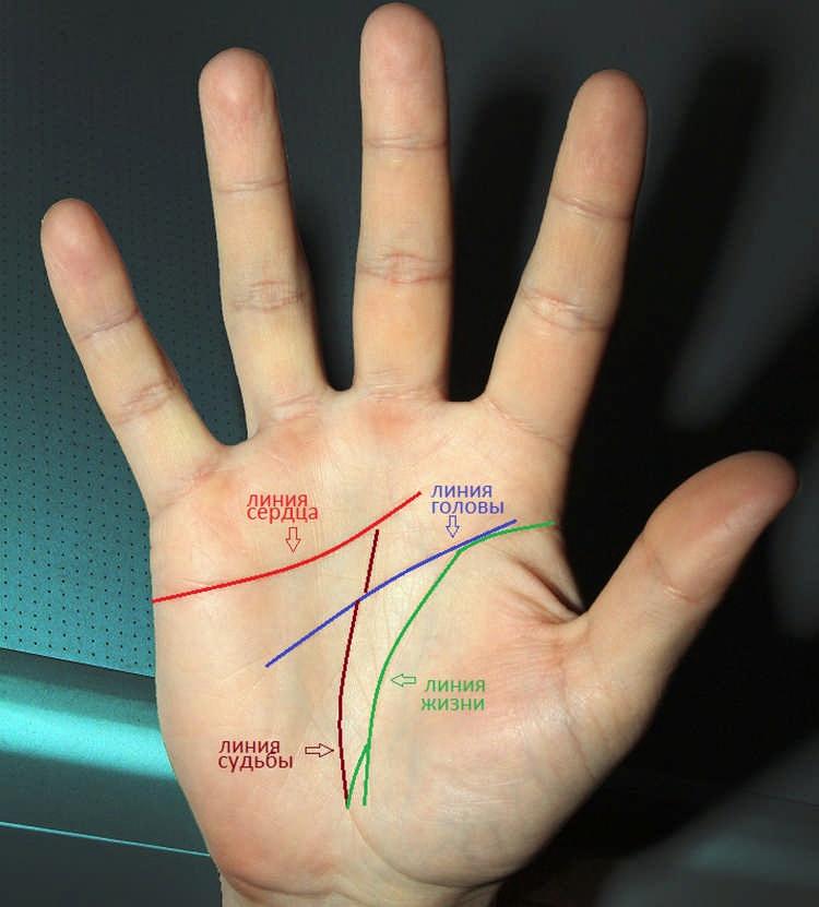 линии на жизни на руке фото с расшифровкой