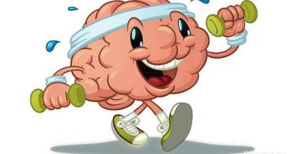 Увлекательные и полезные упражнения для мозга