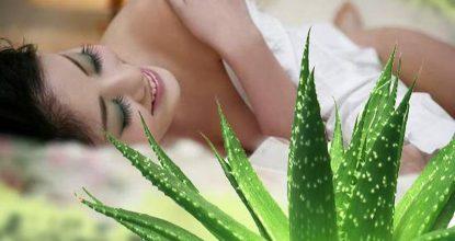Рецепты с алоэ для лечения и красоты