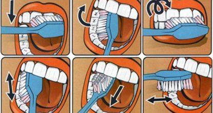 5 правил здоровых зубов