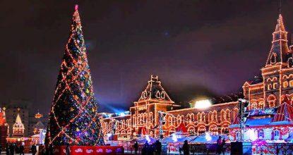 Самые большие рождественские елки