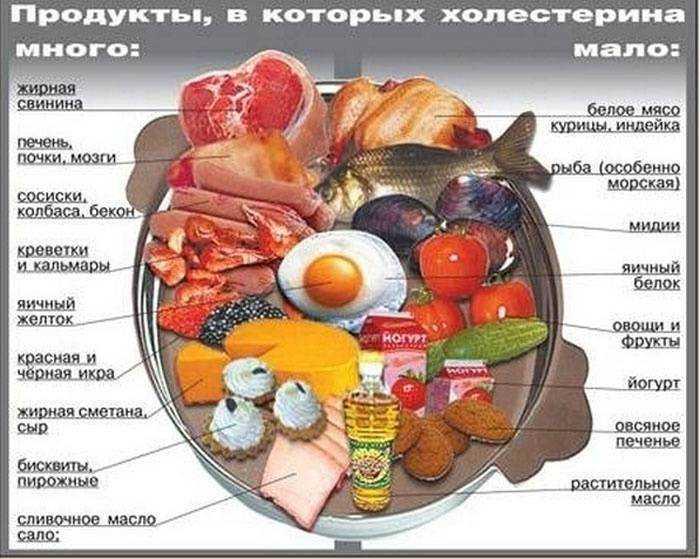 Профилактика повышенного содержания холестерина в крови