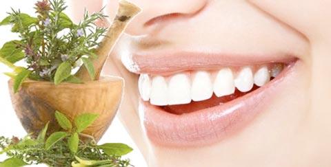 травяные зубы