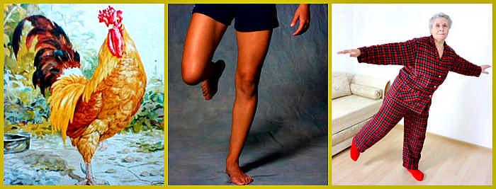 Упражнение: «Золотой петух стоит на одной ноге»