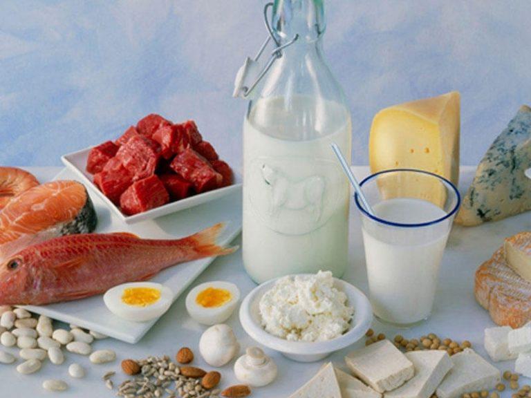 Диета белковая лечебная