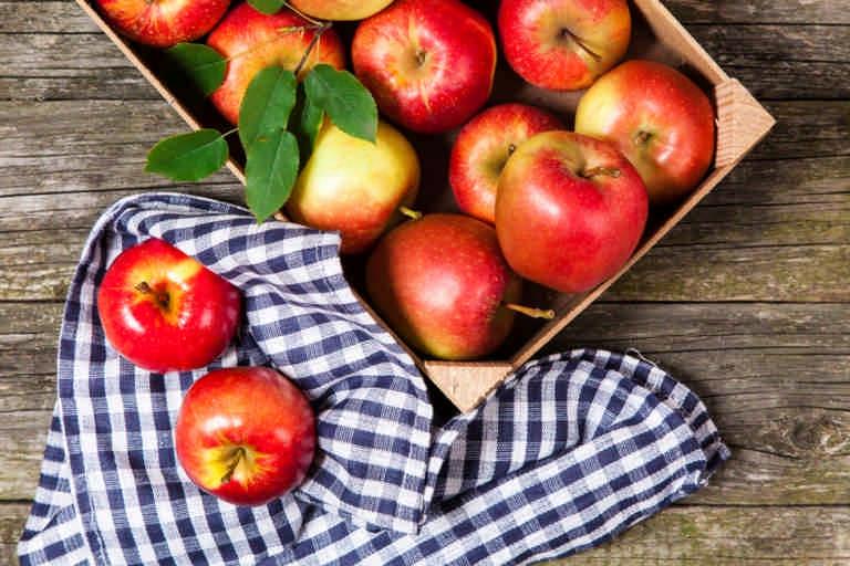 Яблочный спас: традиции, рецепты и интересные обряды