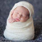 Спящие малыши в гнездышке