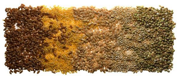 Зерно и крупы