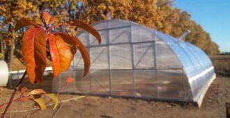 Подготовка теплицы к зиме осенью