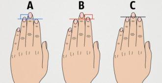 Тест по длине пальцев