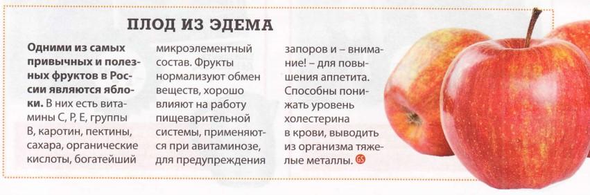 Рецепты перекусов Яблоко