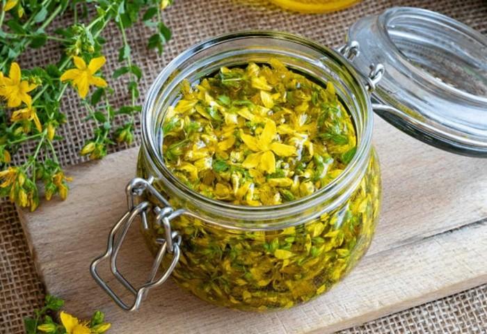 Recept masla zveroboya: kak prigotovit' v domshnih usloviyah