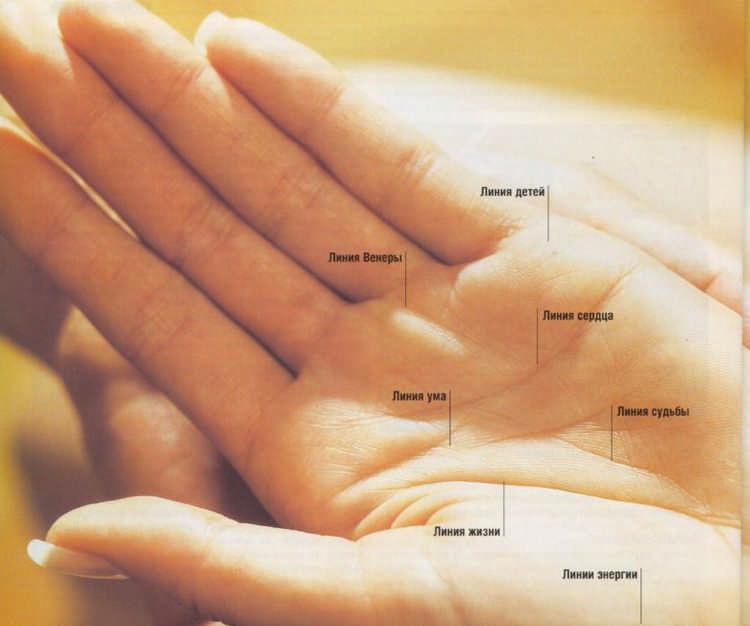 Хиромантия линий на руке - расшифровка с фото