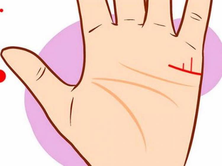 расшифровка линий руки