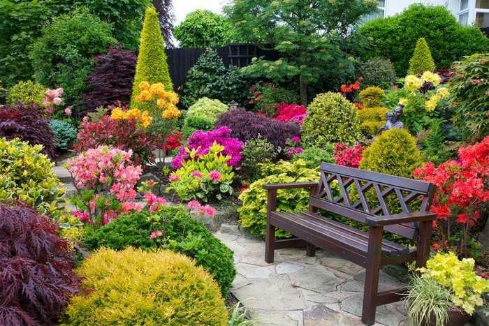 Как подобрать растения, цветущие до осени