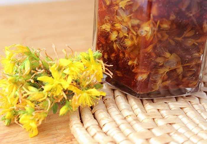 Рецепт масла зверобоя: как приготовить в домашних условиях