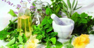 фитодиета Травы для похудения