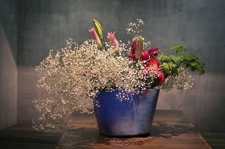 Народные приметы: почему нельзя держать дома розу