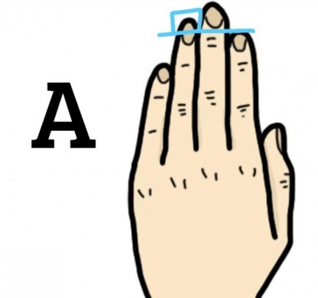 Что говорит длина пальцев на руке о нашем характере