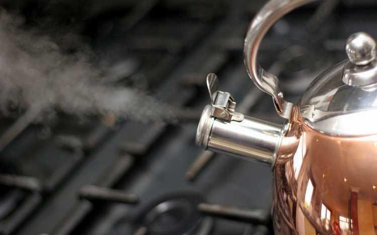 Как очистить чайник от накипи в домашних условиях быстро и эффективно: раскрываем все секреты