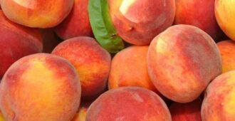 Как использовать персиковое масло для лица, ресниц, волос, от грибка и для еды