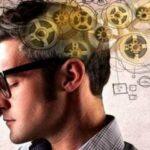 Как развить память и внимание у взрослого человека