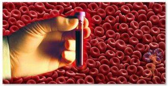 Способы очищения крови в домашних условиях